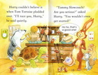 Audiobook - 'The Hare and the Tortoise' Usborne (3)