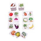 Gra językowa - 'Fruits Vegetables and their Plants 2 in 1' Creative Educational (3)