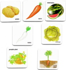 Gra językowa - 'Fruits Vegetables and their Plants 2 in 1' Creative Educational (5)